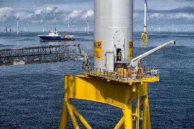 BKR02_Bold_Tern-1600px.jpg - Orsted Wind Power Germany GmbH