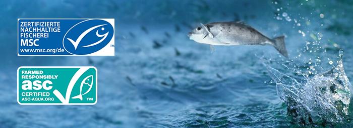 Nachhaltgkeit_Abbildung-B_0718.jpg – Costa Meeresspezialitäten GmbH & Co. KG