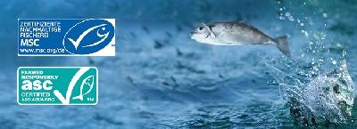 Nachhaltgkeit_Abbildung-B_0718.jpg - Costa Meeresspezialitäten GmbH & Co. KG