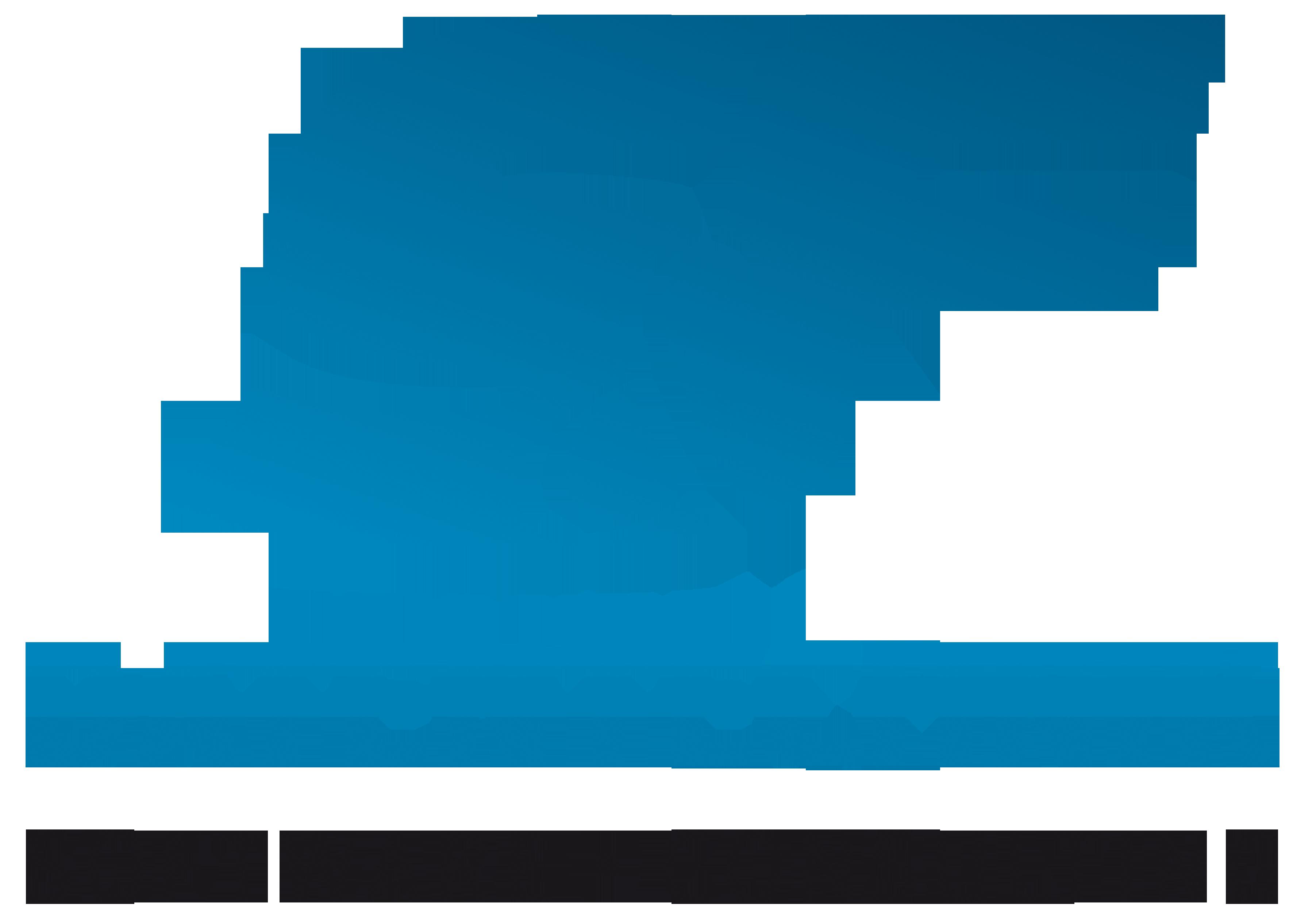 S&F Datentechnik GmbH & Co. KG