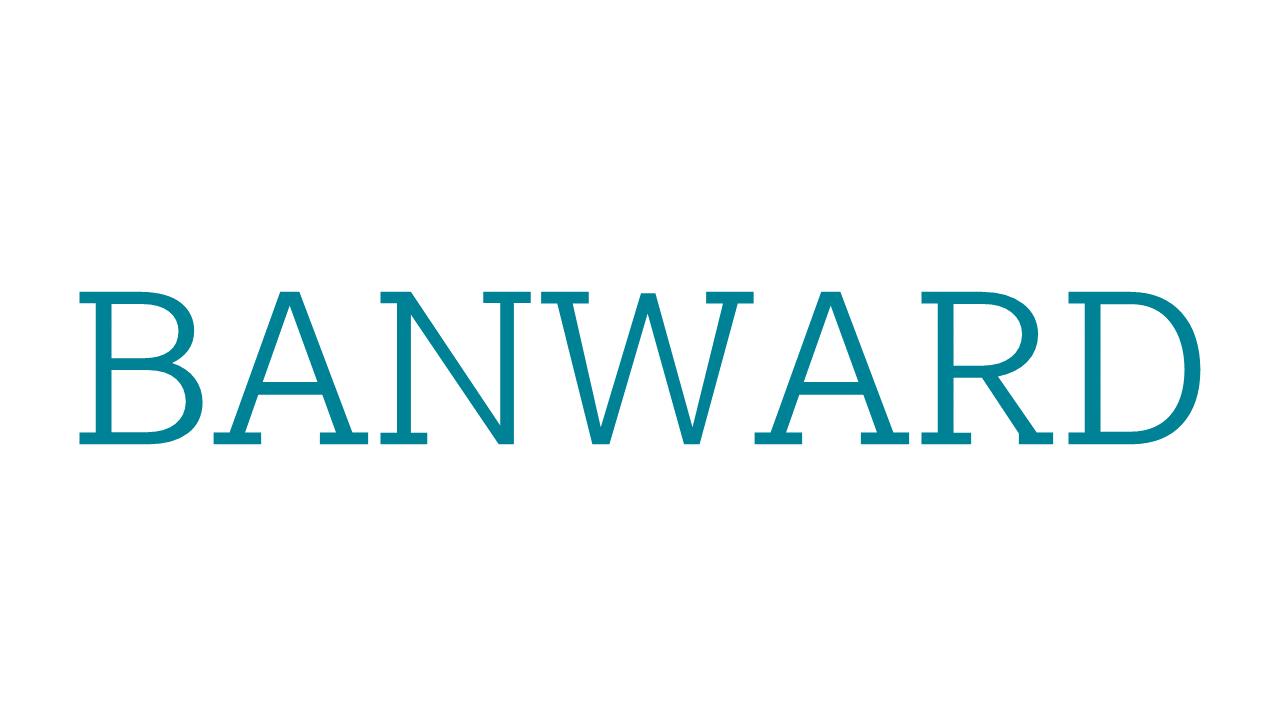 Julian Banse - Banward Unternehmensberatung für digitales Marketing